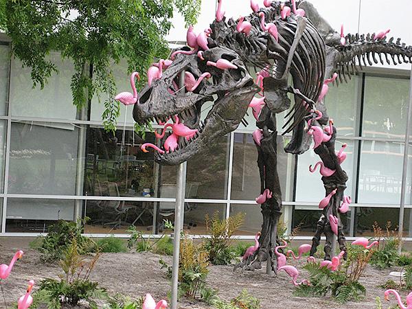 google-campus-dinosaur-stan-flamingos-1